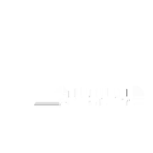 FAIR-PLAY logo