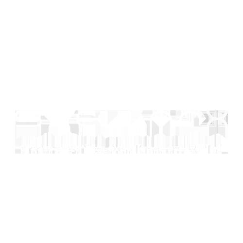 STELLAR X logo